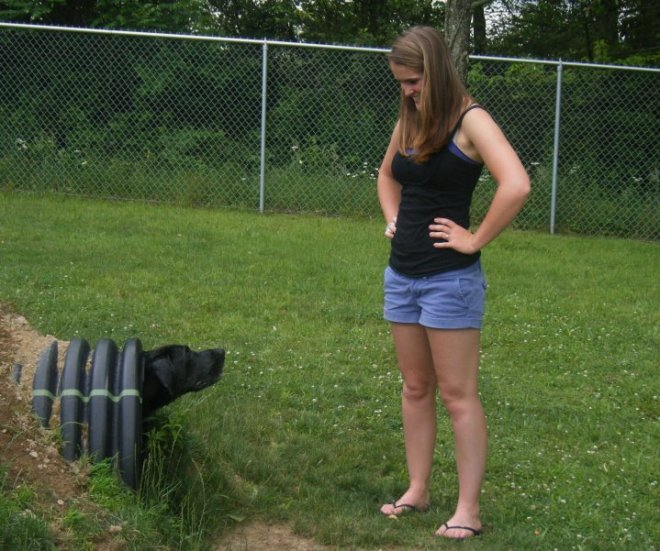 Throughout college, Tonka was a frequenter of dog parks like this one