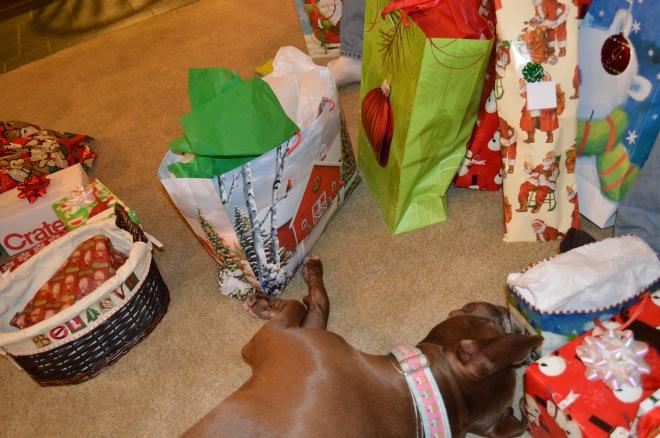Sleeping while we open presents