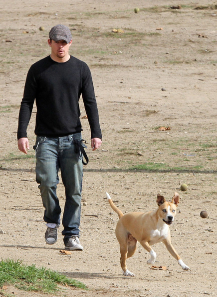 Did you know that Channing Tatum has a pit bull rescue of his own?! As if you needed another reason to love him...