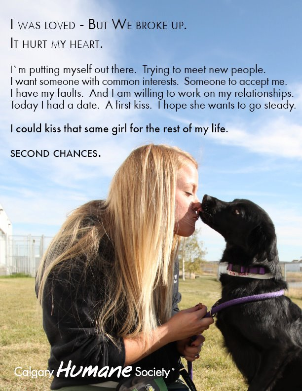adoption ad