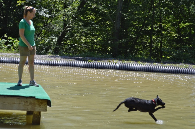 Splash Landing!